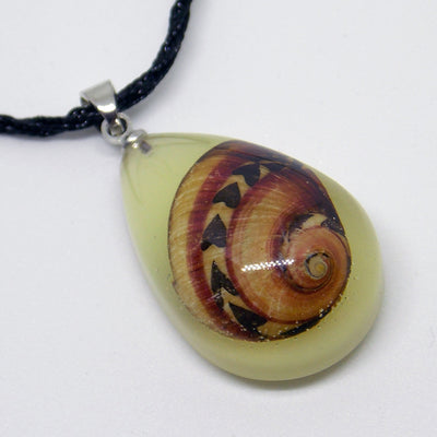 The Calypso's Tear Necklace - A lovely summer necklace with a tiny shell caught in coloured resin.