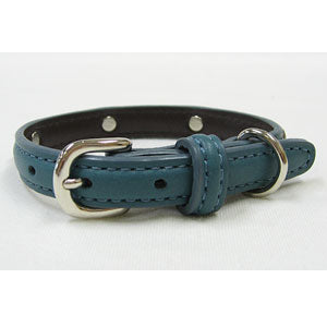 The studded collar