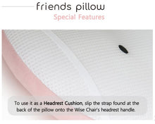 Load image into Gallery viewer, Jellymom Friends Pillow