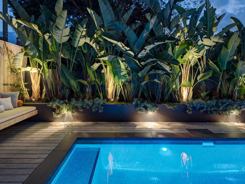 Pool and Landscape Lighting in a backyard