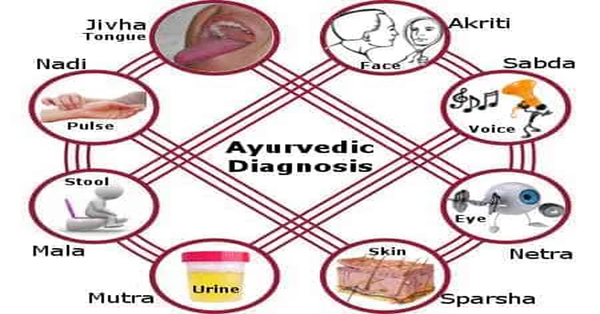 Everything You Want to Know about Ayurveda – Part 4