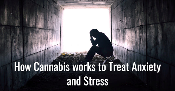 How Cannabis works to Treat Anxiety and Stress
