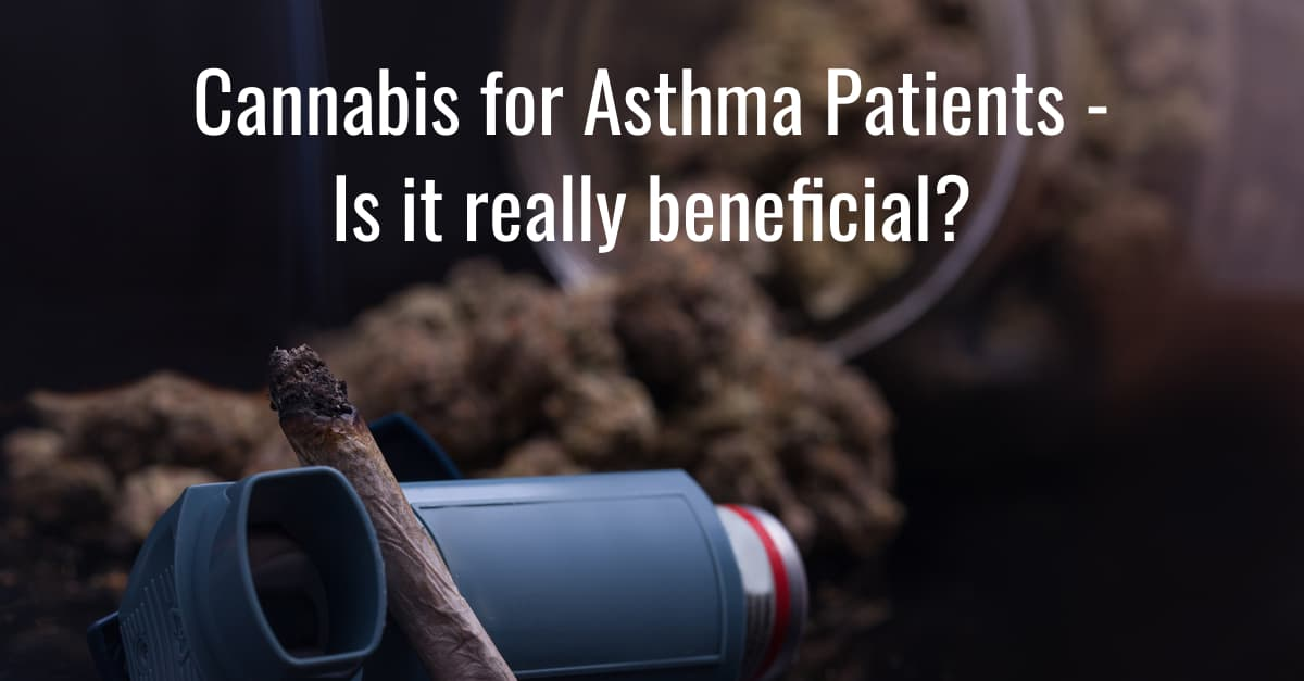 Cannabis for Asthma Patients - Is it really beneficial?