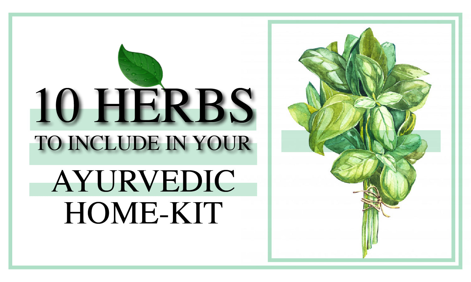 10 herbs to include in your Ayurvedic home-Kit