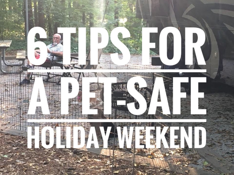 6 Tips for a Pet-Safe Labor Day Weekend