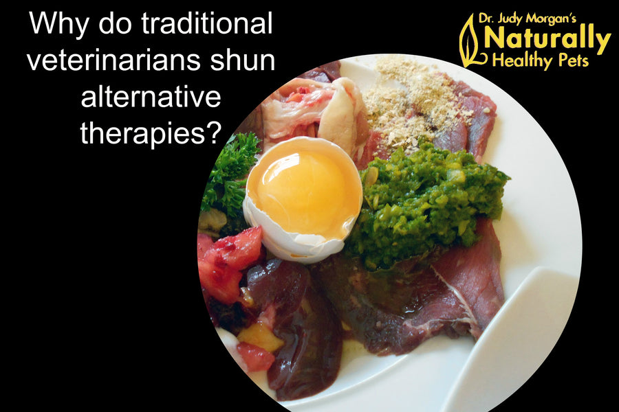 Why Do Traditional Veterinarians Shun Alternative Therapies?
