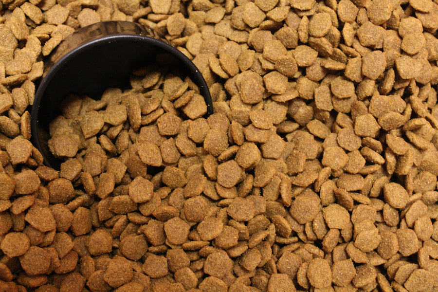 Debunking pet food myths