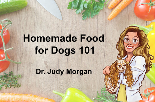 Homemade Food for Dogs 101