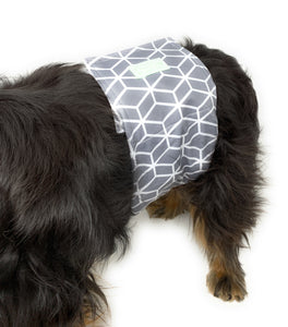 Male Diaper Wraps for Dogs and Cats (3 pack) Printed Pattern