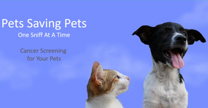BioScent Pet Early Cancer Screening Kit (Dogs and Cats)
