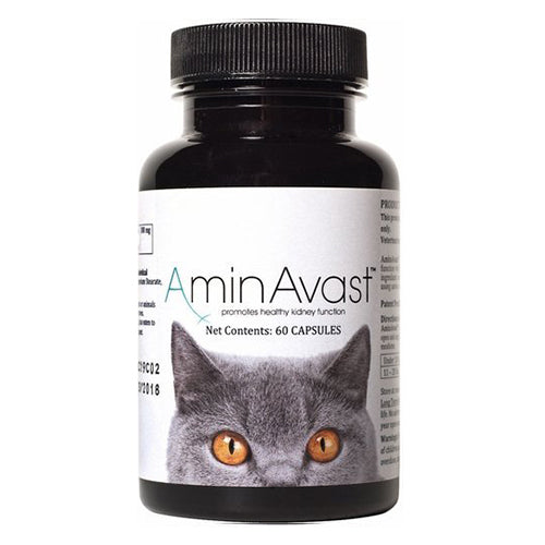 AminAvast Kidney Support for Cats