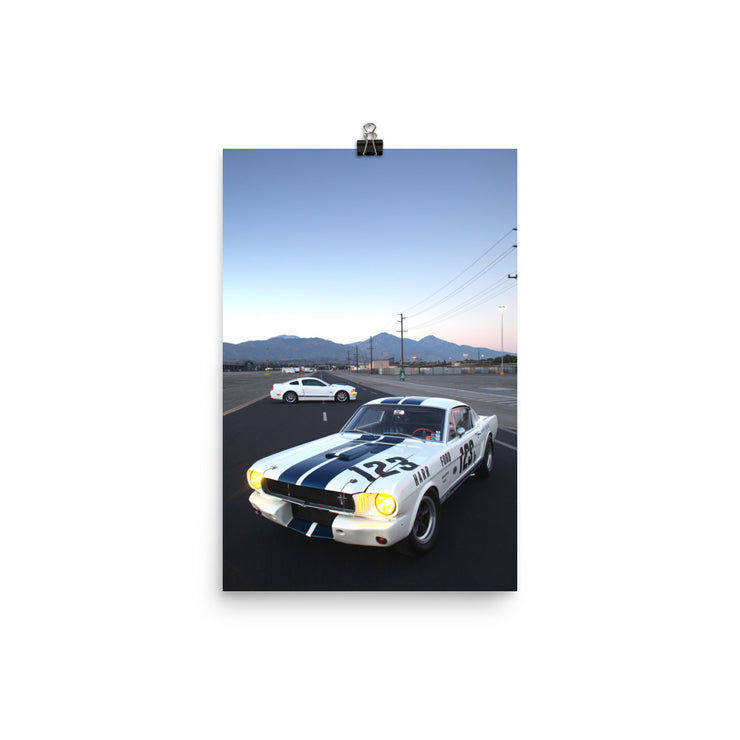 Shelby GT350R & Shelby GT Print