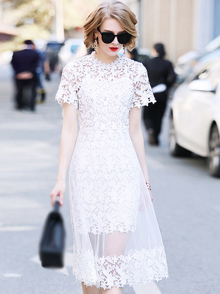Elegant Lace Stand Collar Short Sleeve Beaded Skater Dress