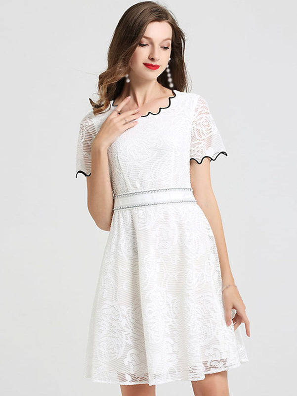 Hit Color Lace Short Sleeve Fit & Flare Dress