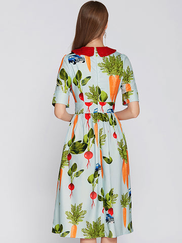 Peter Pan Collar Short Sleeve Print A-Line Dress