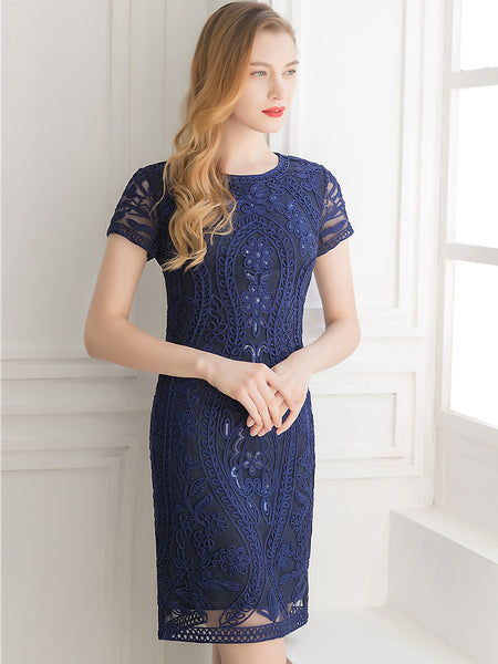 Embroidery Mesh O-Neck Short Sleeve Slim Midi One-Step Dress