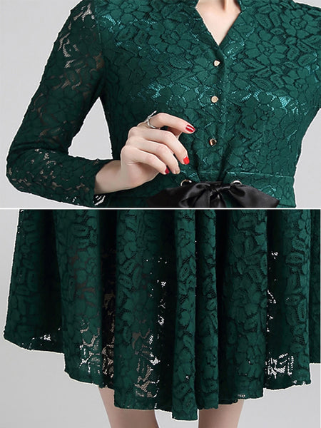 Simple Lace V-Neck Long Sleeve Single-Breasted Lacing A-Line Dress