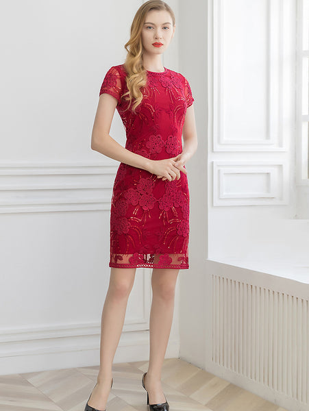 Embroidery Mesh O-Neck Short Sleeve Hollow Out One-Step Dress