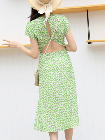 Sparky Floral Backless Slit Green Print Skater Dress