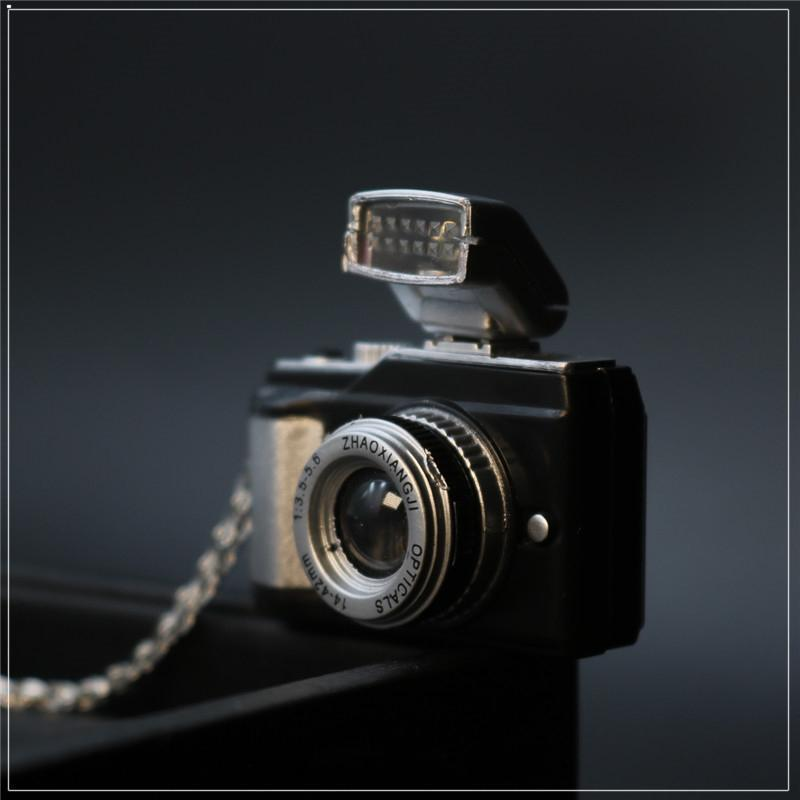 🎁【Best Gift】Photoflash Camera Necklace