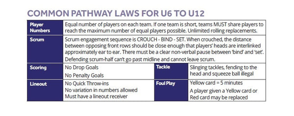 Common Pathway Law for U6 to U12
