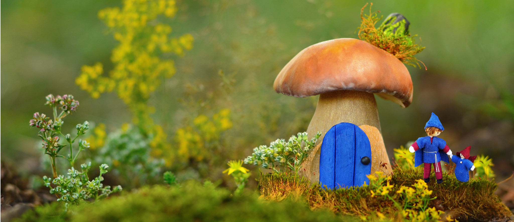 Mushroom Fairy house and fairy dolls