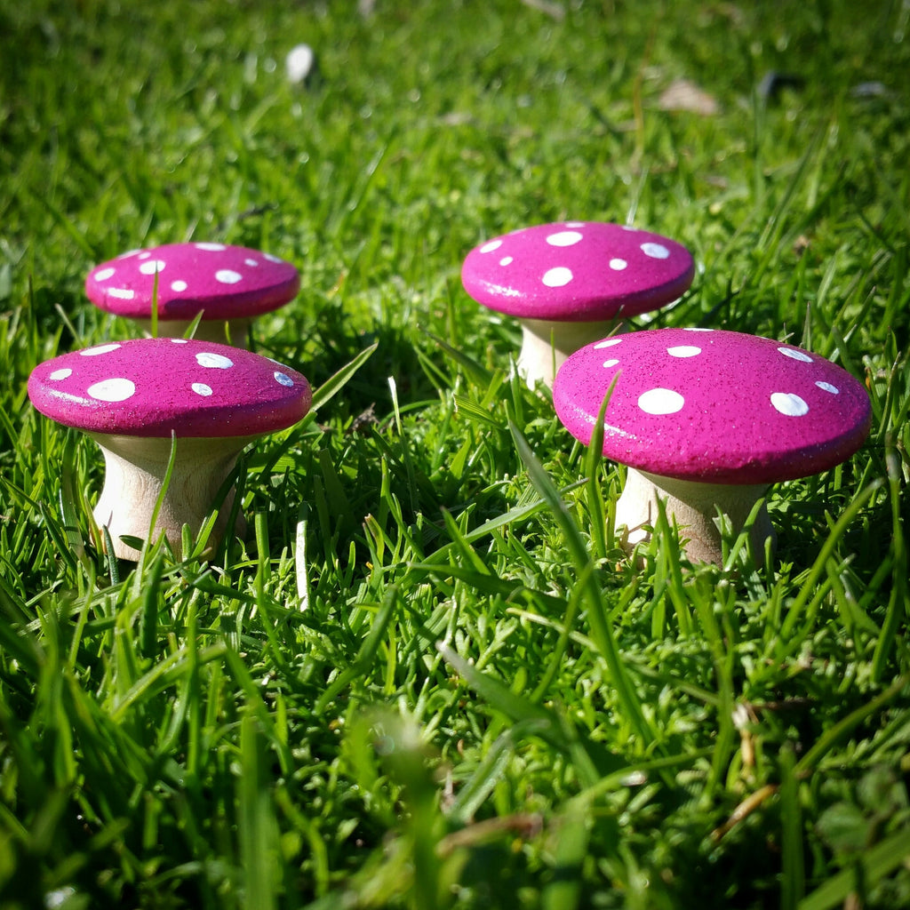 Pink Fairy Toadstools