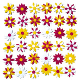 felt Daisy Flower shapes Wildflower toys