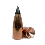 .45 cal 310gr Black Max Hollow Base