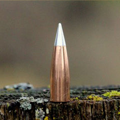 .408 cal 300gr Match/ Hunter
