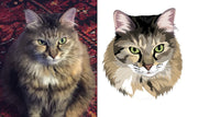 Hand Drawn Pet Portraits...Just upload a Photo of your Furbaby - The Vintage Paws