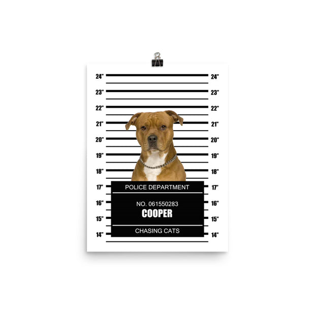 Arrested For...Pet Poster