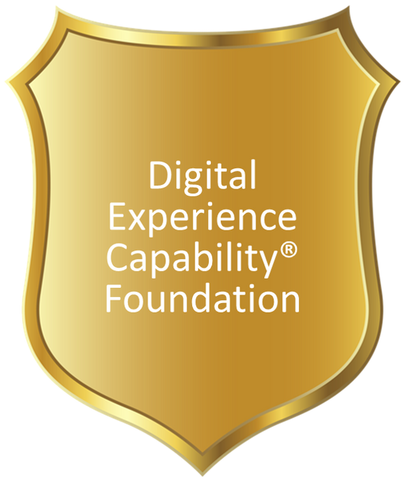 Digital Experience Capability® Foundation
