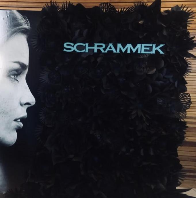 The 'Dr Schrammek' wall
