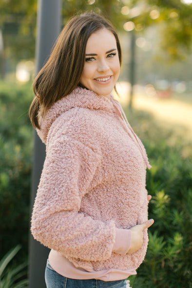 Lucia Blush Plush Sherpa Pullover Hoodie
