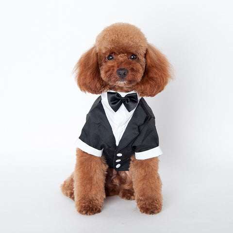 Pet Dog Clothes Cat Prince Wedding Suit Cute Gentleman Cachorro Mascotas Chihuahua Tuxedo Bow Tie Puppy Coat 5Size Supplies Pets