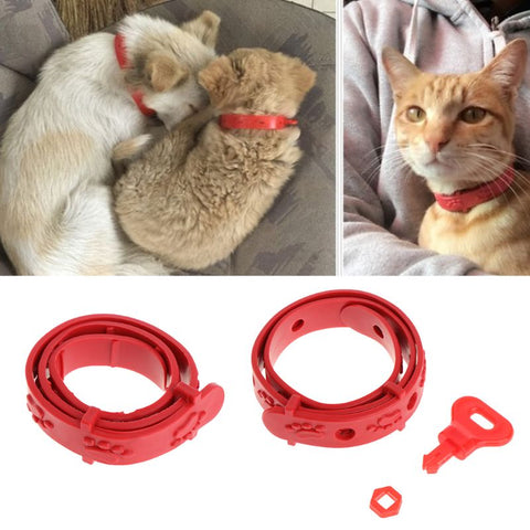 Red Adjustable Dog Cat Rabbit Neck Strap Anti Flea Mite Acari Tick Remedy Pet Collar Pet Supplies Summer Products