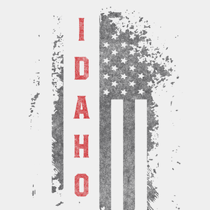Idaho US Flag White Tee