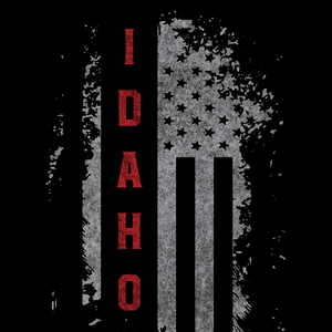 Idaho US Flag Black Tee