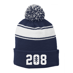 208 Striped Beanie