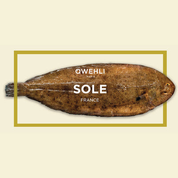 QWEHLI Dover Sole 2,590THB/Kg (2pcs/pack)