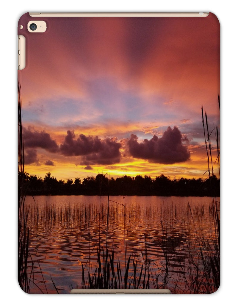 Picturesque iPad Cases