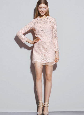 Nude Pink Lace Mini Dress with Organza Layered Edges RD519