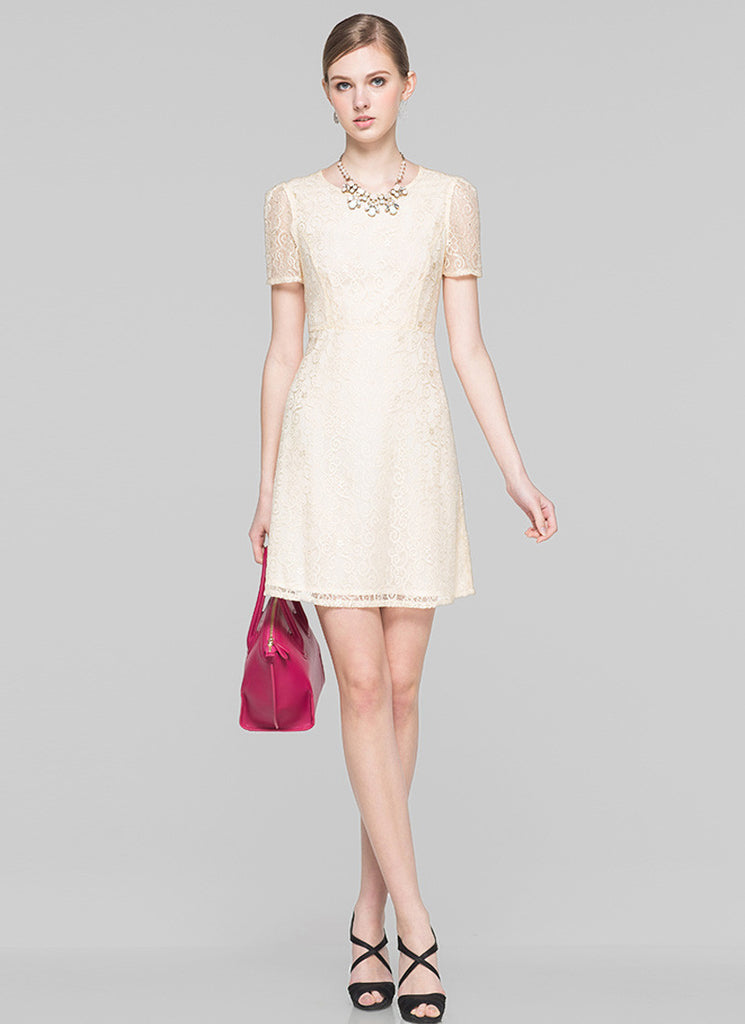Beige Lace Aline Mini Dress with Short Sleeves