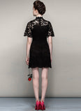Black Lace Min Dress with Stand Collar and Eyelash Details