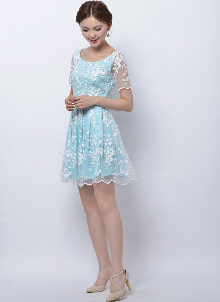 Embroidered White Lace Mini Dress with Blue Lining