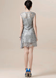 Silver Gray Lace Mini Dress with Asymmetric Pleated Skirt Insertion