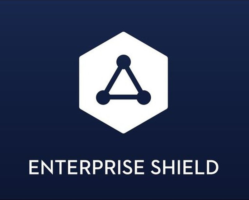 DJI Enterprise Shield Basic (M2EZ)