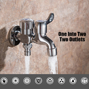 One-In Two-Out Multi-Function Faucet