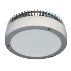 40 Watt LED Canopy 5000K